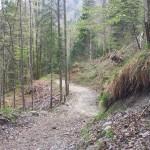 Hirschbergtrails
