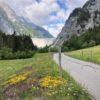 Blumenwiese auf dem Weg zum Gigerwaldsee