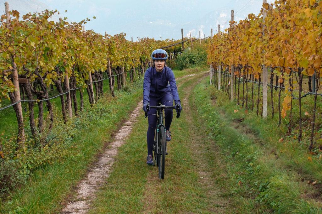 Radfahrerin zwischen Weinreben